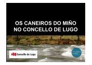 analise - Concello de Lugo