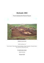 Hofstaðir 2002: Interim Report - Nabo