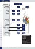 Guide to Isolated Heart Perfusion Systems - Harvard Apparatus - Page 4