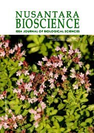 Majorana hortensis ph oto by M. Martin Vicen te | Nus Biosci ... - UNS