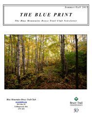 PDF of Blue Print Articles - Our newsletter - Blue Mountains Bruce ...