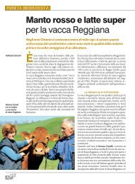 per la vacca Reggiana - Provincia di Reggio Emilia
