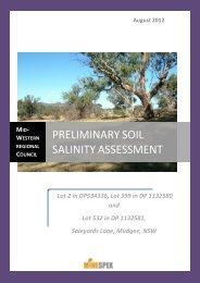 preliminary soil salinity assessment - Mid Western Regional Council