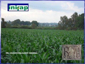 Agricultura Sustentable - Centro Universitario de Ciencias ...