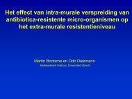 Het effect van intra-murale verspreiding van antibiotica ... - SWAB