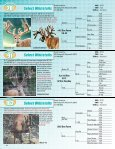 2012 Chupp PREMIER Part2.pdf - Whitetail Deer Farmer - Page 4