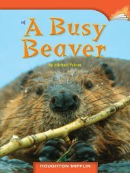 Lesson 6:A Busy Beaver