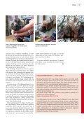 Per star bene - Mir z'lieb - Page 5