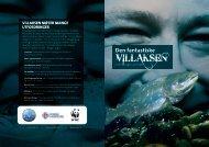 Villaksen - Norges arvesølv - WWF