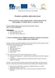 Protokol o průběhu výběrového řízení - irafm