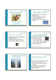 Hand-out presentatie sessie 2.pdf - StudieArena