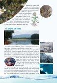 α - Πύλη Παιδαγωγικού Υλικού Περιβαλλοντικής Εκπαίδευσης - Page 7