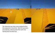 The wing root cap strips were replaced when the ... - Barnstormers