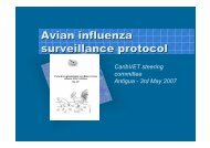 Avian influenza surveillance protocol - Caribvet