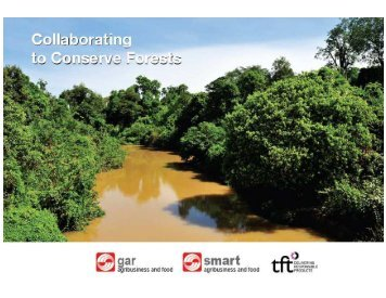 Collaborating to conserve forests - Golden Agri-Resources
