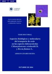 Aspectos fisiológicos y moleculares del transporte de cesio en las ...