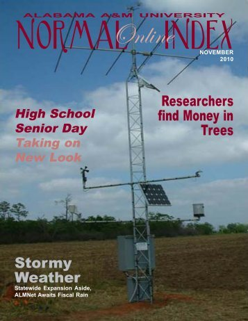 Stormy Weather Researchers find Money in Trees - Welcome to ...