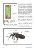 Ethogram of the giant anteater (Myrmecophaga tridactyla) in captivity - Page 3