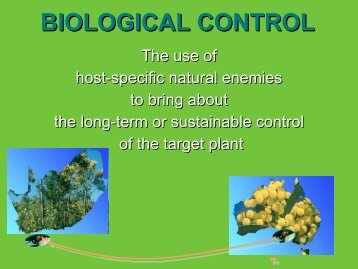 The use of host-specific natural enemies to bring about the long ...