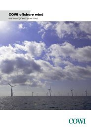 COWI Offshore wind Marine Engineering Services