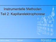 Kapillarelektrophorese - TCI @ Uni-Hannover.de