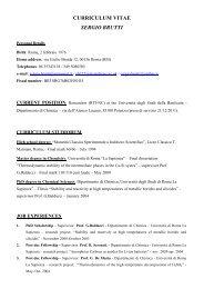 CV-Sergio Brutti-elenco pubblicazioni_2012_ENG - Università degli ...