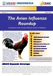 The Avian Influenza Roundup - The Communication Initiative Network