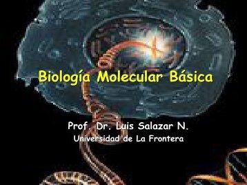 DNA - Med.ufro.cl - Universidad de La Frontera