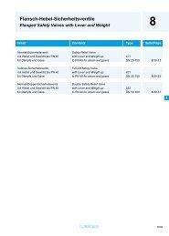 Flansch-Hebel-Sicherheitsventile - Process Valve Solutions Ltd