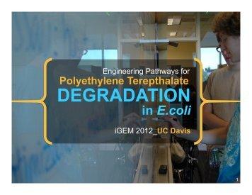 UC Davis Championship Presentation - iGEM 2012