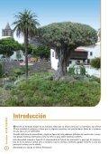 Tenerife - Travelplan - Mayorista de viajes - Page 4