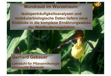Mundraub im Wurzelraum: Gerhard Gebauer