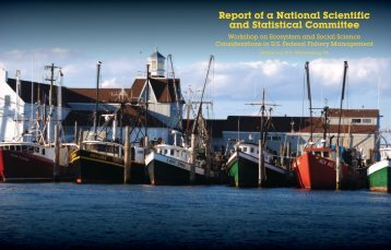 Final Report - US Regional Fishery Management Councils