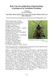 Rote Liste der gefährdeten Schmetterlinge ... - LANUV NRW