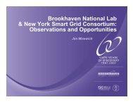 Brookhaven National Lab & New York Smart Grid Consortium ...