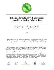 Estrategia para el desarrollo ecoturistico comunitario, Xcalak ...