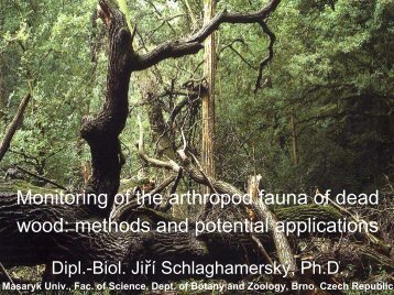 Monitoring of the arthropod fauna of dead wood: methods and ...
