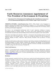 Castle Resources Announces Appointment of Vice President of ...
