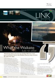 January 2013 - Waikato District Council