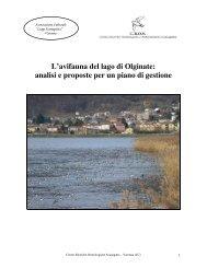 L'avifauna del lago di Olginate - Centro Studi Naturalistici ONLUS