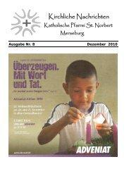 Ausgabe Nr. 8, Dezember 2010 ( PDF -Datei, 451 kB) - Katholische ...