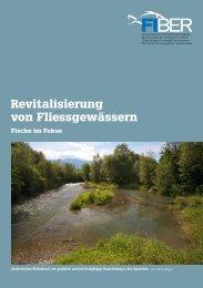 Revitalisierung von Fliessgewässern - Fiber