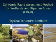 Structural Patch Richness - Cram