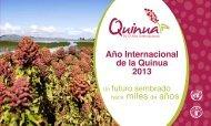 2013 Año Internacional de la Quinua - FAO