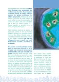 L´Alliance expliquée aux enfants - FGF - Page 6