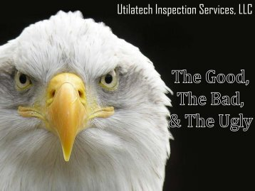 Utilatech Inspection Services, LLC - New Mexico Avian Protection