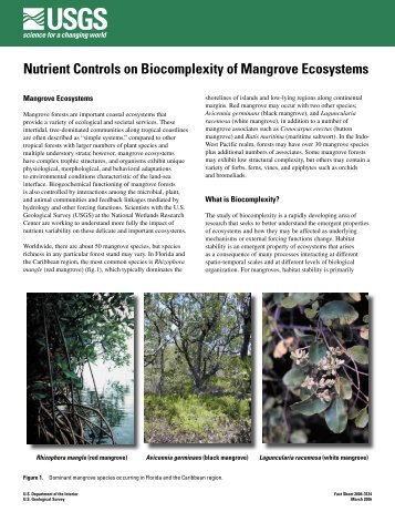 Nutrient Controls on Biocomplexity of Mangrove Ecosystems