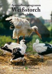 Artenschutzprogramm in Sachsen - Publikationen - Freistaat Sachsen