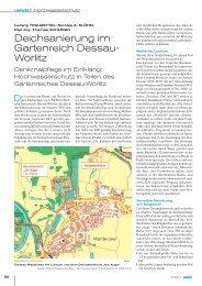Deichsanierung im Gartenreich Dessau- Wörlitz - baumdiagnostik.de