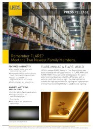 Remember FLARE? Meet the Two Newest Family Members. - Ledil